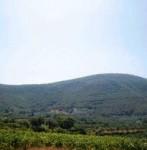maglavas-messinia