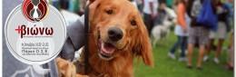 Η Καλαμάτα γιορτάζει την Παγκόσμια Ημέρα των Ζώων