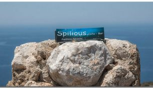 spilious-cover
